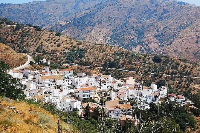 Malaga Highest Peak E-Bike Tour: White Village Olias and El Palo, Malaga, ESPAÑA