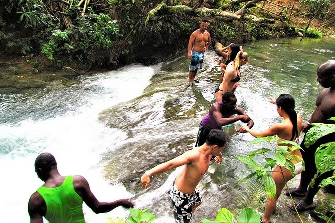Private YS Falls and Black River Safari from Negril, Negril, JAMAICA