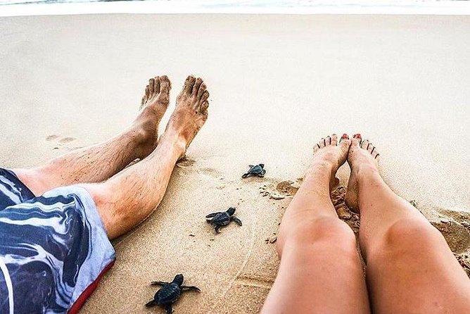 03 Days Beach Holidays in Sri Lanka with Kingfisher, Colombo, SRI LANKA