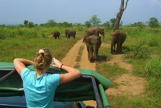 2 Days Tour to Galle & Udawalawe National Park, Colombo, SRI LANKA