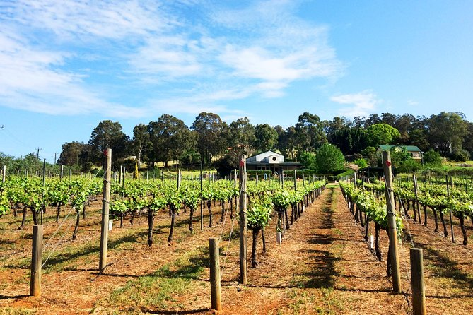 Cider, Wine & Whiskey - Premium Small Group Tour from Perth or Fremantle, Perth, AUSTRALIA
