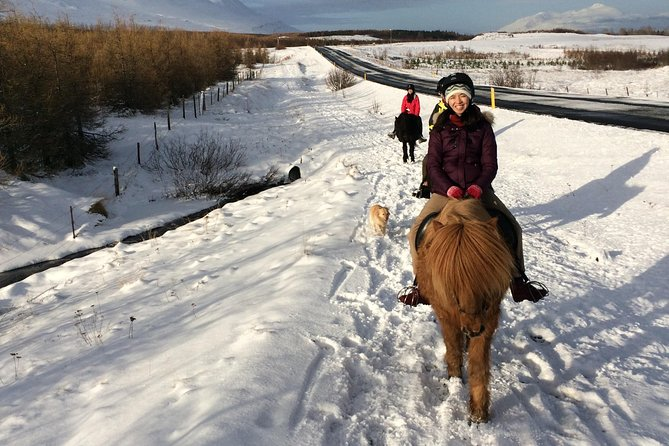 At Skjaldarvik we offer riding tours where people get a chance to learn about the Icelandic horse under expert supervision. The tour will take about 1,5 hours (1 hour riding on the horse) and will take you through the beautiful surroundings around our guesthouse. <br><br>After the riding tour you can havea cup of coffee or teas with cake and enjoy the beautiful view from our hot tub.