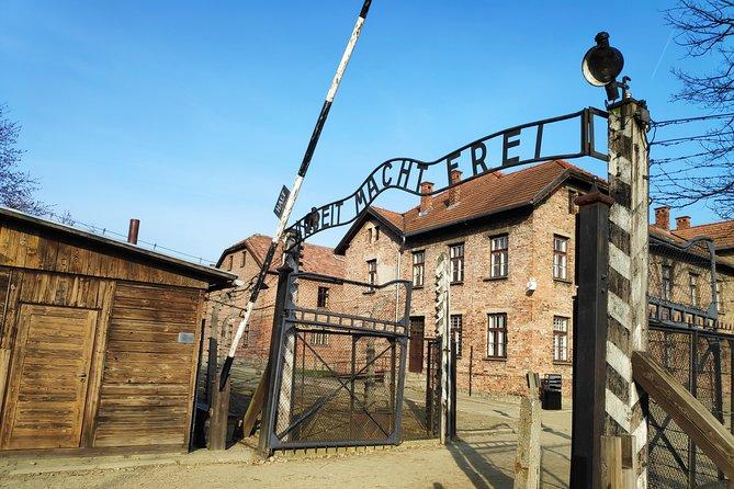 Auschwitz-Birkenau from Krakow with Private Car, Cracovia, Poland
