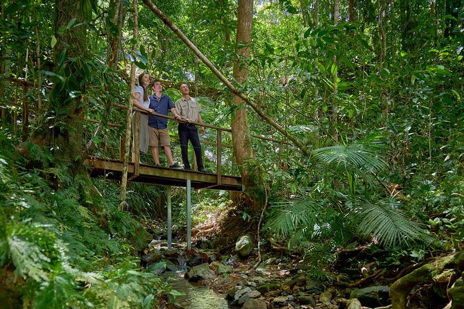 Visita a Daintree y Cape Tribulation desde Cairns, Cairns y el Norte Tropical, AUSTRALIA