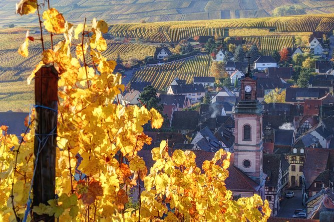 Discover the wines of Alsace during this half day wine tour departing from Colmar. In small groups of a maximum of 8 people, follow your driver/guide along the Alsatian wine route and enjoy two tastings in local wineries. Here you will discover the different aromas that can be found in the famous local varietals which include Gewurztraminer, Riesling, Pinot gris, Sylvaner and many more.