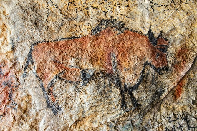 Half Day Tour Lascaux IV from Sarlat, Bergerac, FRANCIA