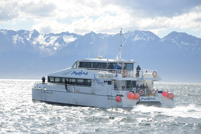 Half-Day Boat Trip to Penguin Colony from Ushuaia, Ushuaia, ARGENTINA