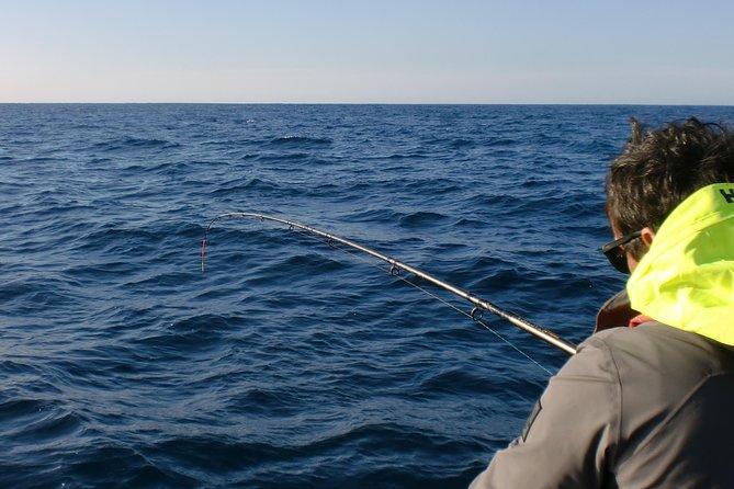 Excursão de pesca esportiva - Tudo incluso, Distrito de Setúbal, PORTUGAL