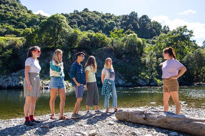 Valley Movie Tour from Wellington, Wellington, NUEVA ZELANDIA
