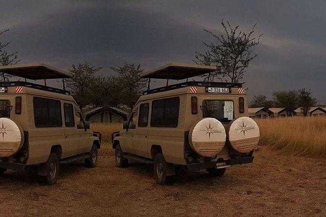 3-Day Two Nights Full Game Drive Serengeti Safari, Arusha, Tanzânia