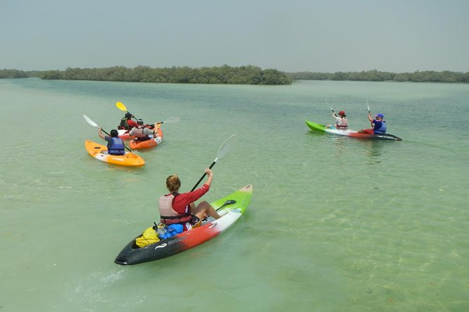 Overview. 1 ½ to 2 hours of Paddle along the eastern mangrove lagoons of Abu Dhabi and marvel at the spectacular scenery (you paddle yourself) Double or Single Kayaks available. Encounter a variety of terrestrial and marine life from your kayak.