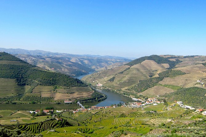 Douro Valley Private Tour with Local Guide - Lunch, Boat Ride, Tastings Included, ,
