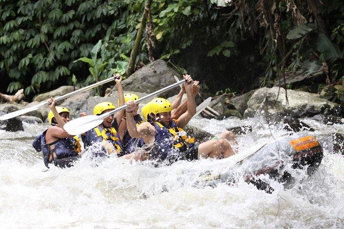 Full-Day Ayung River White Water Rafting and Ubud Tour, Seminyak, Indonésia
