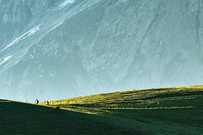 Visita guiada en Grindelwald, caminata, Grindelwald, SUIZA