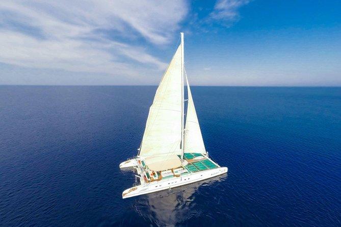 VIP Catamaran Cruise from Ayia Napa, Ayia Napa, CHIPRE