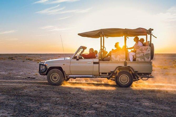 2-Day Tour: Petra, Wadi Rum, and Dead Sea from Amman, Petra, JORDANIA