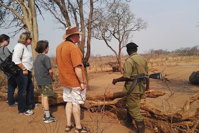 Game Drive and Waking Safari, Livingstone, ZIMBABUE
