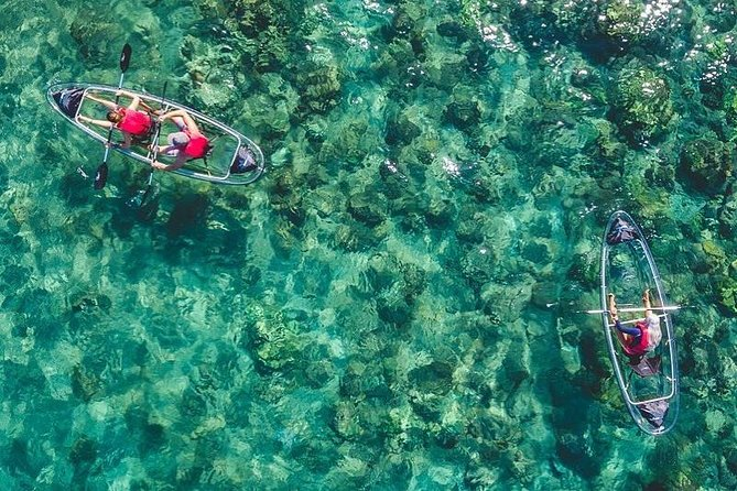 View marine life in Maui's only guided, completely clear kayaks. This unique adventure allows for all ages, experience and activity level.