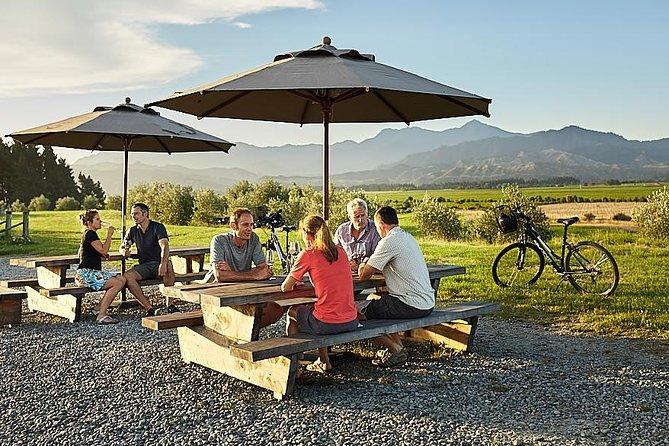 Half Day Guided with Half Day Self-Guided Marlborough Wine Region Bike Tour, Blenheim, NUEVA ZELANDIA