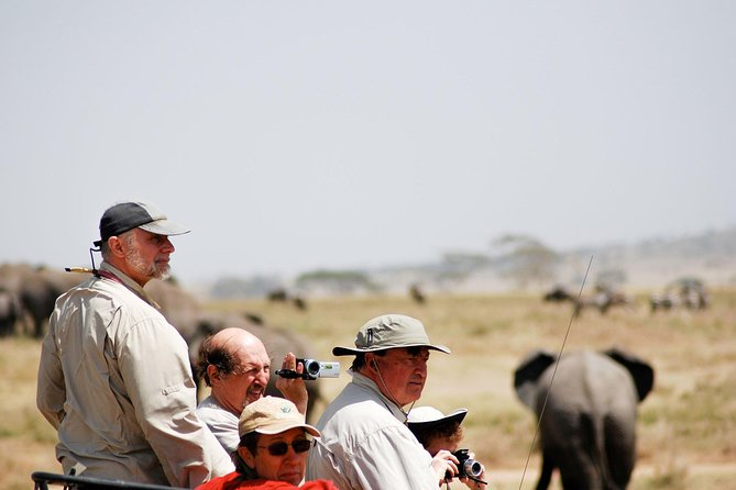 Tarangire National Park Day Trip, ,
