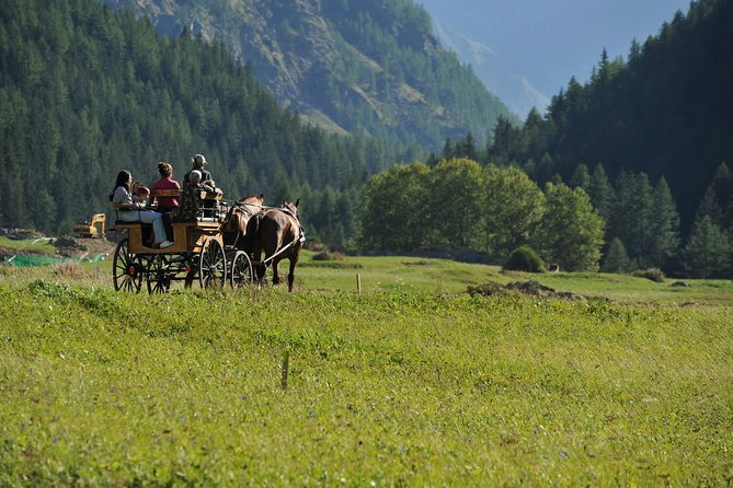 A fun excursion in a sleigh or horse-drawn carriage to safely enter the discovery of the Gran Paradiso National Park at an altitude of 1,680. The route goes into the woods inside the Park, offering participants the chance to observe flora and fauna - the driver uses sleigh or horse-drawn carriage depending on the season and snow conditions - the itinerary and duration of the activity do not change - and sight the many mammals and rapacious that populate this corner of the Alps. In the intermediate seasons it is easy to see herds of ibex and chamois stationed in the pastures above. The tour is followed by a lunch with a tasting menu from the Aosta Valley on a farm to sample the local specialties at km 0. This activity is suitable for couples and families with children of any age.<br><br>Please note that the excursion starts at 11 am and lasts 45 minutes, lunch will be at 12:30 pm at La Barme Hotel Ristorante.