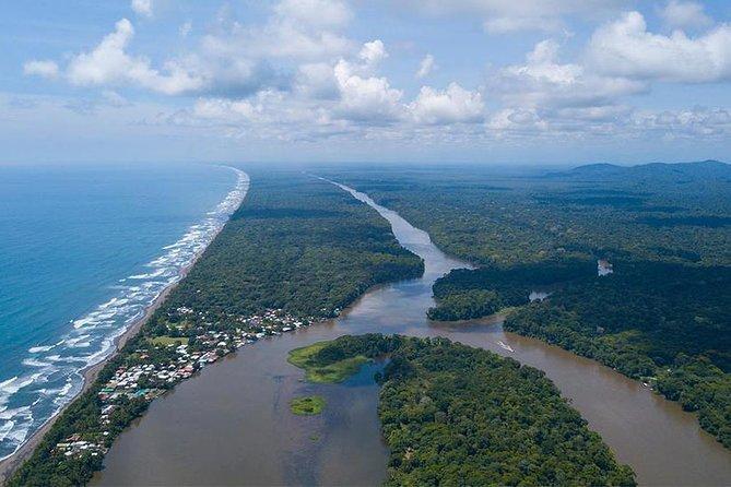 Parque Nacional de Tortuguero, ,
