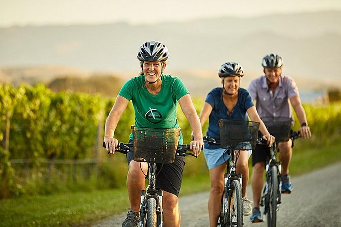 Deluxe Full-Day Marlborough Wine Region Guided Bike Tour, Blenheim, NUEVA ZELANDIA