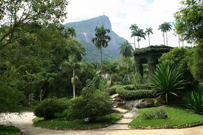Spend an idyllic tour at the world-famous Rio de Janeiro Botanical Garden, or Jardim Botânico. On this guided tour of the sprawling UNESCO biosphere reserve, amble down the Avenue of the Royal Palms, and stroll past trees and plant life from around the world, including gigantic water lilies from the Amazon. Learn the garden's history and glimpse wildlife such as monkeys and toucans along the way. Then enjoy free time to wander the grounds on your own before taking transport back to Rio hotels.
