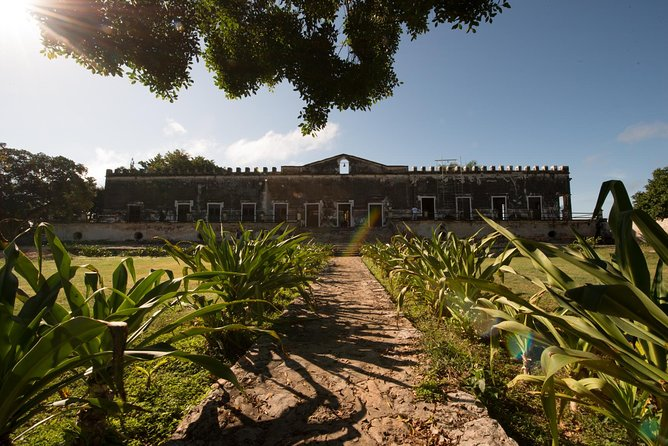 Enjoy a unique experience by visiting Yaxcopoil Hacienda, one of the most important rustic henequen Hacienda in the region for its size and great magnificence, Uxmal, the most important Mayan City of the Puuc area and the refreshing Cenote Peba. This tour includes hotel pickup, shared round trip, bilingual guide and lunch.