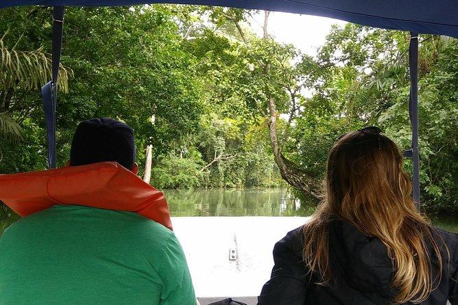 Tour de dia completo Canal de Panama, la estacion de tren y la Isla de los Monos, Ciudad de Panama, PANAMA