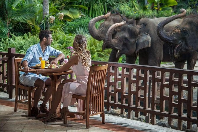 MAIS FOTOS, Care Experience for The Elephant and Breakfast in Ubud