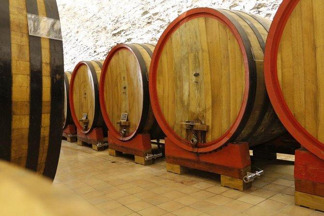 MÁS FOTOS, Wine tasting, Valpolicella cellar visit, Amarone and red wines region day tour