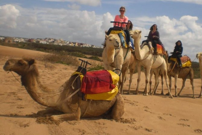 Camel Ride on the Beach of Essaouira, Esauira, MARROCOS