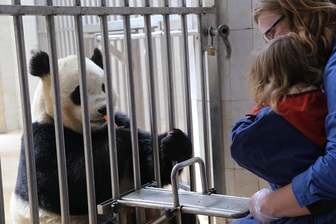 """This tour is perfect for Panda fans and guests who one-step booking covered all highlights Chengdu and Sichuan, guarantee high service and low cost if you choose English speaking driver or driver/guide service.<br><br>Tour A: hire driver/guide to Wolong Dujingyan panda center see the pandas and take care pandas so-called """"panda keeper """" <br>Tour B: hire driver/guide visit Leshan Giant Buddha <br>Tour C: culture tour to Mt Qingcheng and Dujingyyan <br>Tour D: you can take 2 days trip visit Leshan Buddha and Emei Mountian <br>Tour E: Chengdu city highlights visit Panda panda breeding center and city highlights such as old street and park temples <br>Tour F: you could get 5-7 days to visit west Sichuan Tibetan plateau by overland such as Jiuzhaigou experience local Tibet culture, stop take pictures one the way wherever you want.<br>Go head to Check any tours your liked, we would like to customize all your requirements. <br>please go head contact with us and book our tour <br><br>Yakpanda <br><br>"""