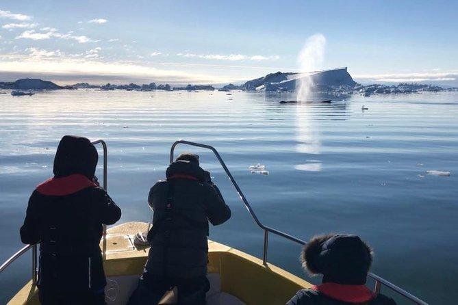Sail among majestic icebergs in the UNESCO World Heritage Site, Ilulissat, GROENLANDIA