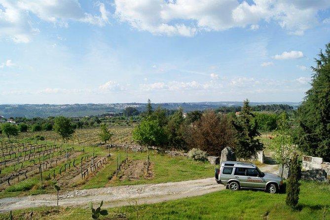 Nosso tour off road permite-nos apresentar as vinhas da região do Dão. Seguimos por estradar existentes dentro do pinhais e entramos no meio das vinhas para que você tenha uma completa experiência em conhecer como é a região do Dão, suas vinhas escondidas, estradas estreitas e pequenas aldeias. Uma prova de vinho de alta qualidade produzido na região do Dão.