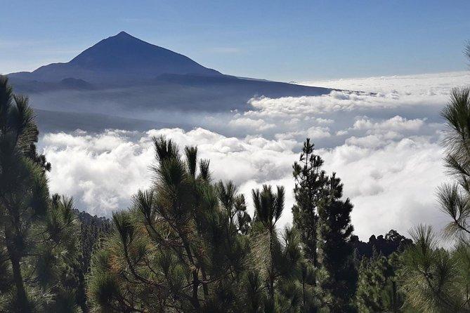 El Teide por la noche: puesta de sol romántica y experiencia de observación de estrellas con Elegant Excursions, Tenerife, ESPAÑA