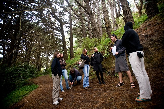 Wellington's Full Day Lord of the Rings Locations Tour including Lunch, Wellington, NUEVA ZELANDIA