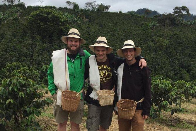Coffee Tour Santa Rosa de Cabal, Pereira, COLOMBIA