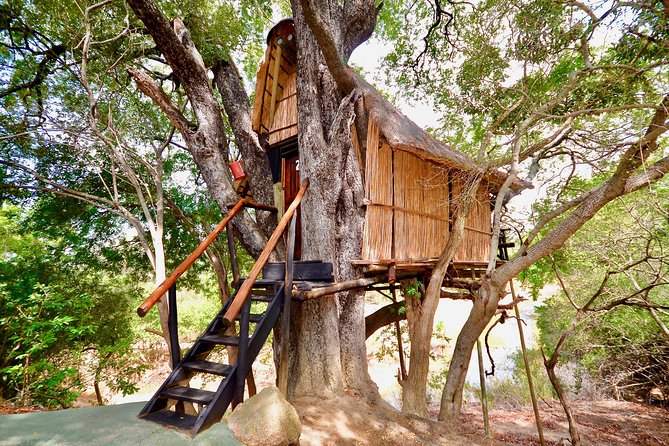 3 Day Treehouse Kruger National Park Safari, Johannesburgo, South Africa