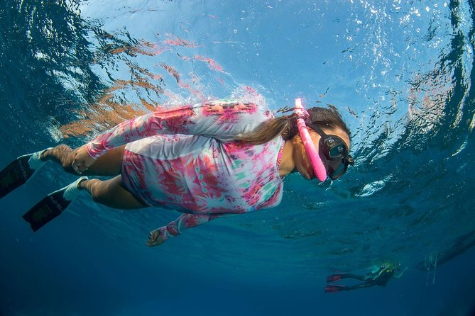Cruise Excursion – 2 Snorkel Trips for one person with transport, Roatan, HONDURAS