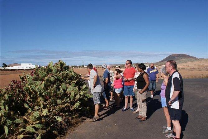 Jeep Safari: Northern Lanzarote tour, Arrecife, ESPAÑA