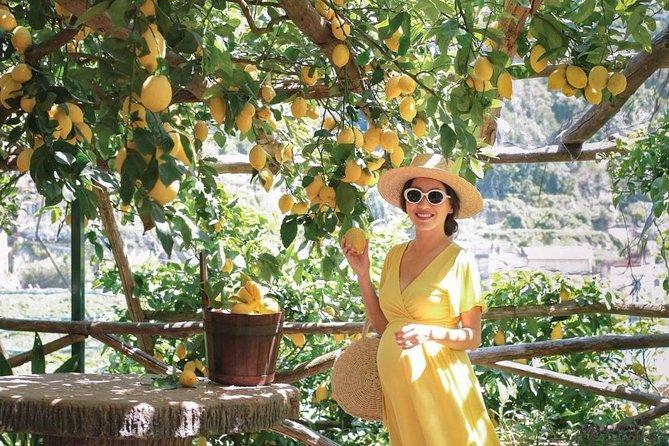 Amalfi Lemon Tour Experience, Amalfi, ITALIA