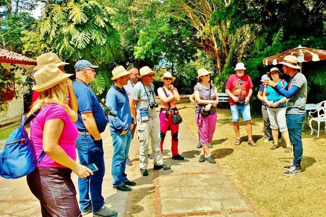 Visita privada de 8 horas a plantación de café con todo incluido, entradas y almuerzo, Bogota, COLOMBIA