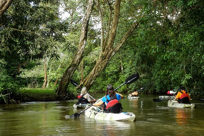 A Wild Nature Trek we Created along a River never used before for Adventure Tours.<br><br>Developed in the most Bio-Diverse area of Costa Rica, crossing the most extended Wetland of the Country.