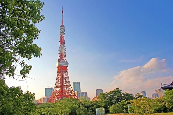 Freely set up plans Guided Private Tours in Tokyo, Tokyo, JAPAN