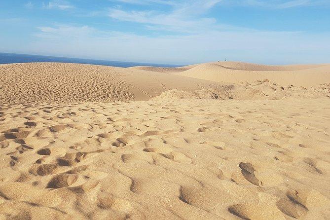 Agadir Day Trip to paradise valley & Sahara Sand Dunes With Lunch., Agadir, MARRUECOS
