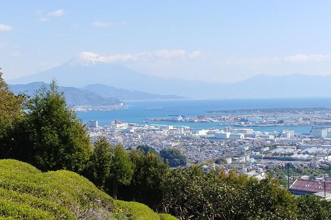 Shizuoka is a city where the first SHOGUN Ieyasu was buried on top of KUNO mountain. His mouseleum is still placed there silently. Once in a year, on April 7th, an annual ritual is held for him at TOSHOGU shrine.<br><br>To the shrine, rope way (sky way gondla lift) runs every 6 minutes, so it takes only 10 minutes to meet the holy mauseleum. After meeting him, you can visit the TOSHOGU museum located just in front of the shrine, where you can see the 'golden clock sent by Spanish King to IEYASU' which is one of the national treasures of Japan. The important swords or armours are also shown there. <br><br>On coming back to NIHONDAIRA by ropeway, you should visit 'YUME terrace' where you can see the panoramic view of Mt. Fuji and the MIHO Pine groves on the Pacific Ocean. The landscape there is magnificent!
