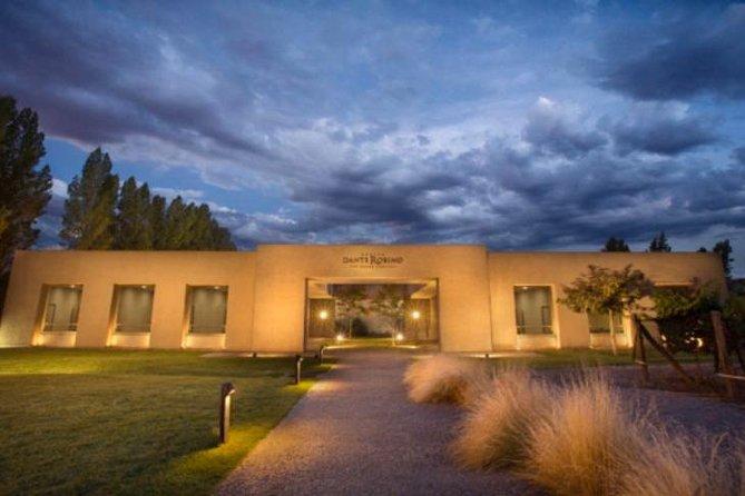Excursión privada: región vinícola de Luján de Cuyo, Mendoza, ARGENTINA