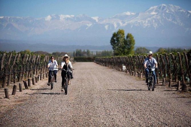MÁS FOTOS, Bike por Bodegas y Viñedos - Mendoza